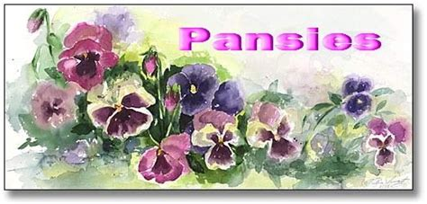 Hind art pansies