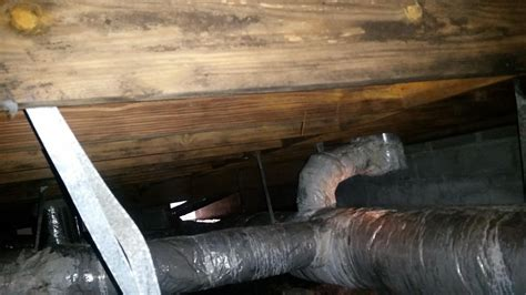 Mold Remediation   Cleaning and Disinfecting a Crawl Space