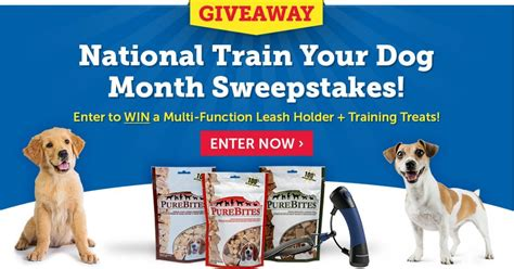 Dog Sweepstakes - sweepstakes enter to win awesome training gear for your dog petmeds 174 pet health blog