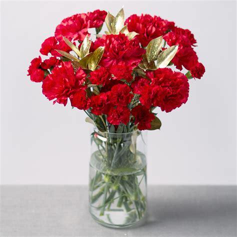 Send Bouquet by Festive Bouquet Send Festive Carnations Flower