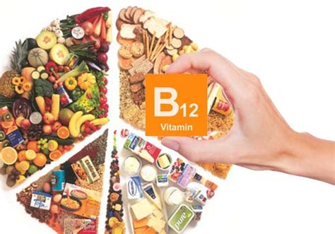 vegetables with b12 foods containing b12 recipes food