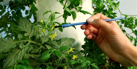 ensure  indoor tower garden   success