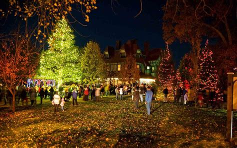 best real christmas trees in south jersey the best trees in the united states travel leisure