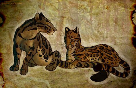 Clouded Leopard. Ocelot. by Culpeo Fox on DeviantArt