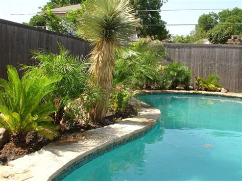 backyard paradise ideas best 25 tropical backyard landscaping ideas on pinterest