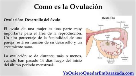 que es inductor de la ovulacion como es la ovulacion