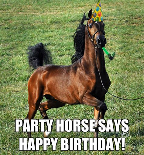 Horse Birthday Meme - horses happy birthday meme