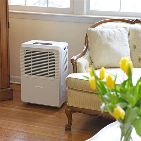How To Dehumidify A Room by Best 70 Pint Dehumidifier Reviews Humidity Helper