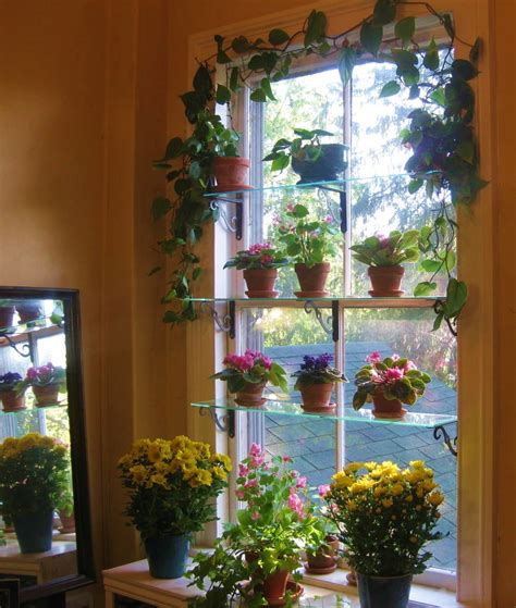 indoor window garden create a window garden my dream backyard pinterest