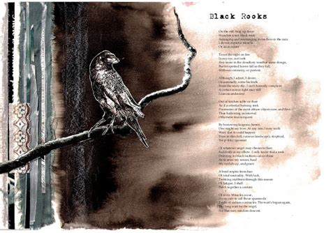 themes in black rook in rainy weather sylvia plath illustrated poems