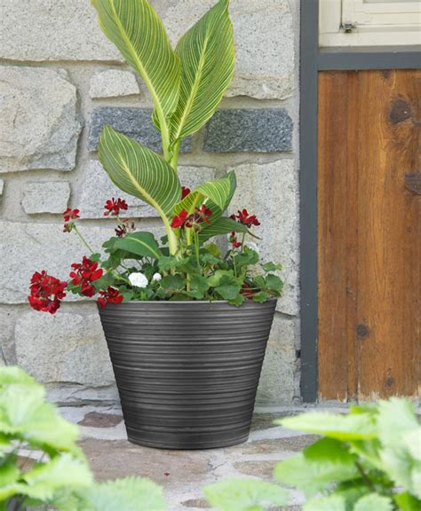 Southern Planter by A Container Garden Or Planter Southern Patio 174