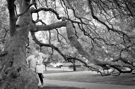 jeff sessions family tree indianapolis engagement portrait photographer
