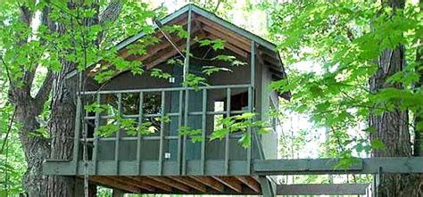 tree house designers tree house plans to build for your kids