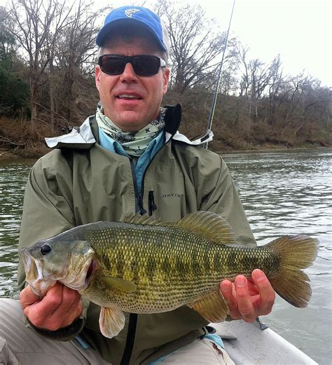 special fishery spawns record guadalupe bass houston