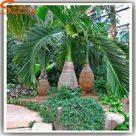 precios de plantas para jardin todo tipo de palmera artificial de plantas tropicales y