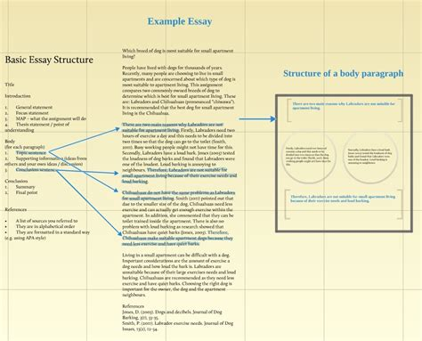 essay structure lesson prezi for teaching essay structure kayhammond68