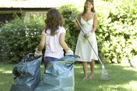 como eliminar las pulgas en casa c 243 mo eliminar las pulgas de la casa vix