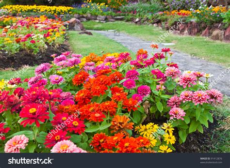 Colorful Flower Garden Stock Photo 91412876 Shutterstock Colorful Flower Garden
