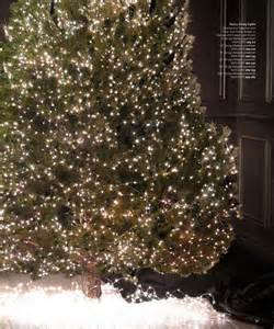 starry string lights restoration hardware 17 best images about tree inspiration on