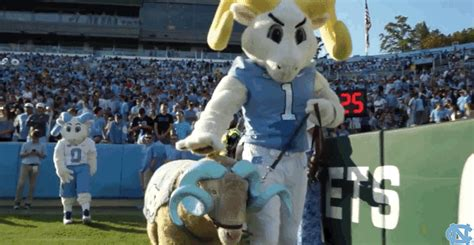 unc rams unc tar heels gif find on giphy