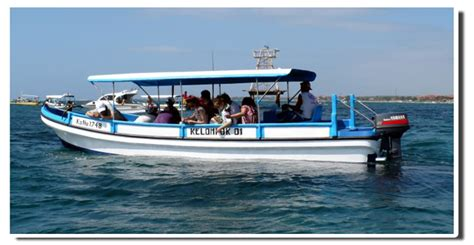 glass bottom boat hundred islands turtle island tour
