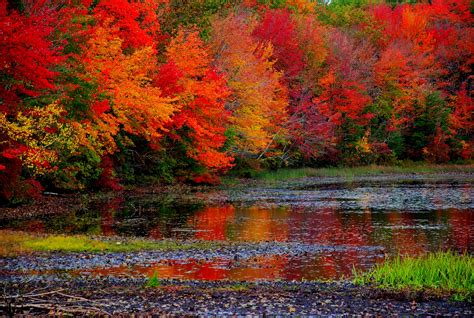 fall colors fall foliage planning guide road trips with tom