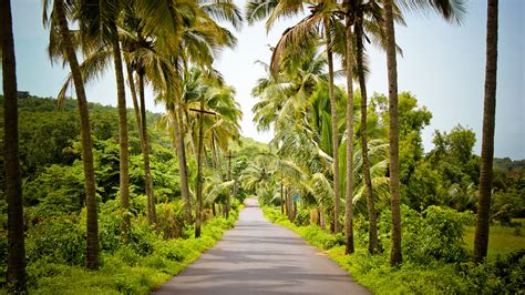 high resolution hd nature images  india beautiful street