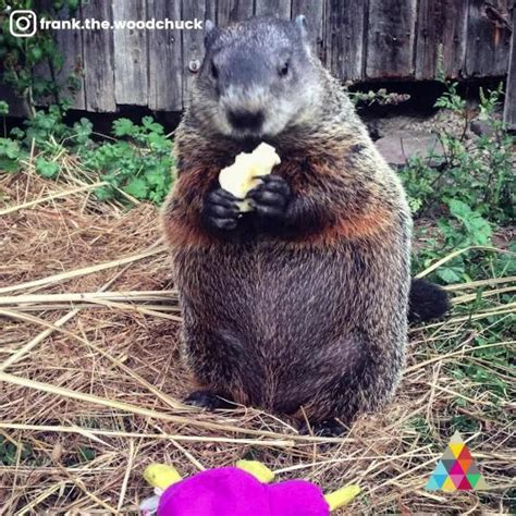 groundhog day you don t me exclusive why don t we talk taking you tour instant me