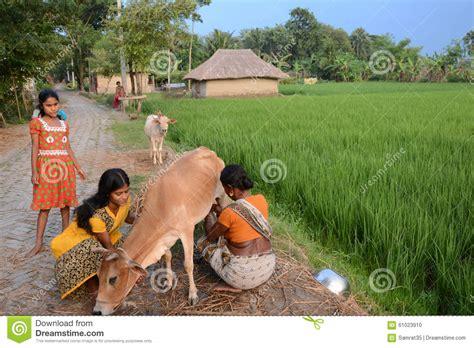 imagenes de la vida rural forma de vida rural imagen editorial imagen de leche