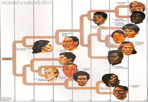 libro raza y cultura historia de las razas humanas sociedad y cultura