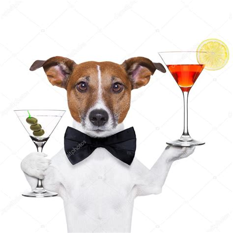 cocktail dogs cocktail martini glasses stock photo 169 damedeeso 20503539