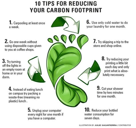 7 Ways To Cut Your Carbon Emissions what is carbon footprint and what can you do to reduce