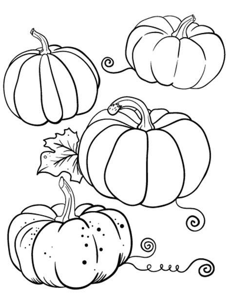 multiple pumpkin coloring pages free pumpkin coloring page
