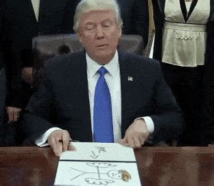 Animated Gif Meme Generator - 21 funny trump draws gifs that capture the true talent of