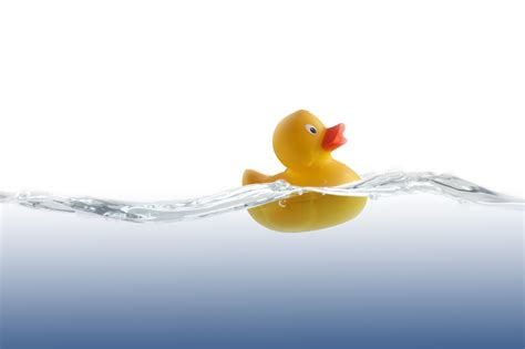 rubber duck bathtub rubber duck png cliparts co