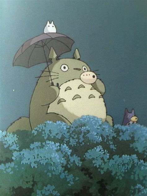 8 Amazing Studio Ghibli by Best 25 My Totoro Ideas On Totoro