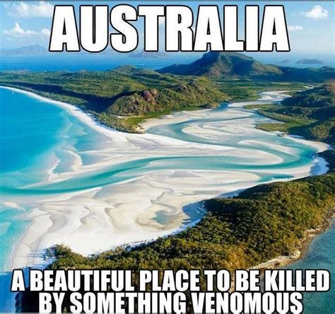 Australia Meme - 27 hilarious australia memes that perfectly describe