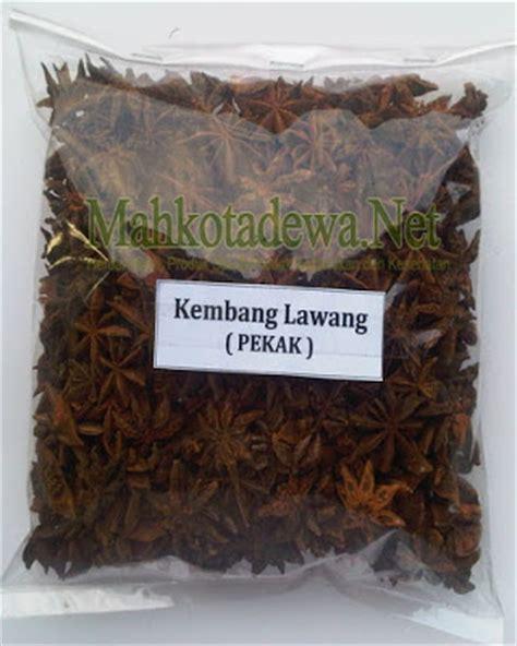 Pekak Bunga Lawang kembang lawang pekak teh herbal pelangsing alami quot daun