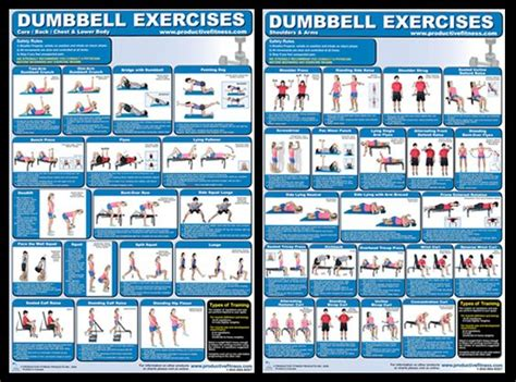 dumbbell exercises workout poster combo available at