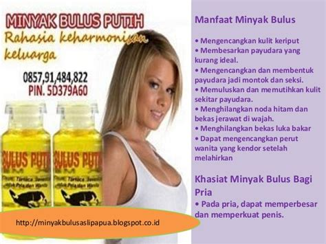 Minyak Bulu5 Putih Minyak Herbal Pengencang Payudara manfaat minyak dari bulus putih minyak bulus putih untuk wajah khas
