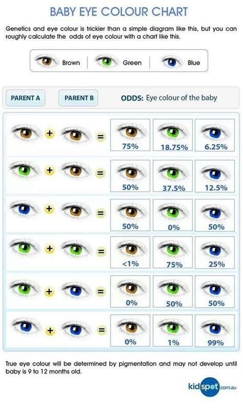 eye color pattern of inheritance baby eye color chart writing references pinterest