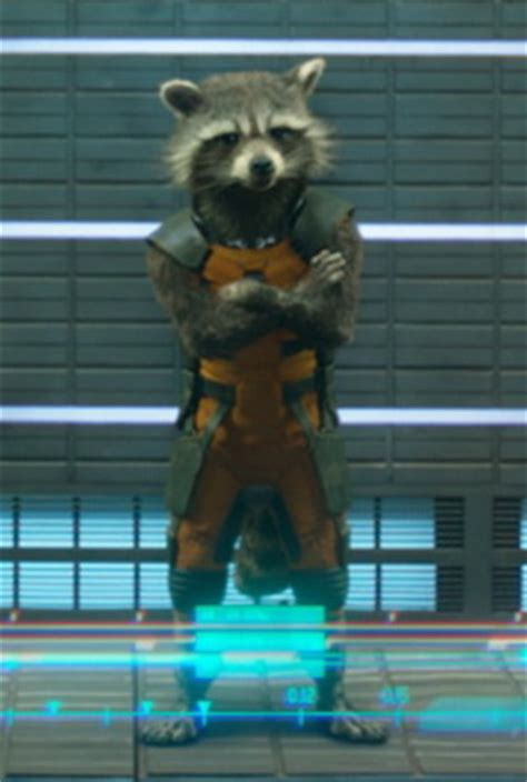 Marvel Film With Raccoon | 301 moved permanently