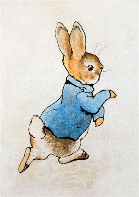 rabbit run ideas  pinterest rabbit