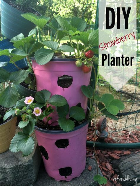 diy strawberry planter diy strawberry planter from recycled materials challenge refresh living