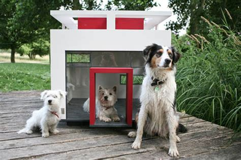 cubix dog house cubix modern dog house dog milk
