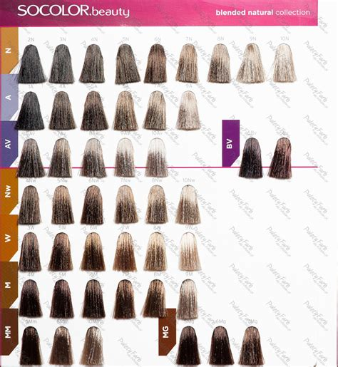 matrix hair color hair dye colors chart for coloring your hair accurately of