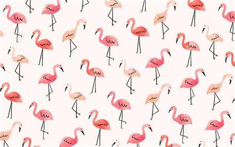 flamingo macbook wallpaper inspired idea new tech august wallpapers flamingo