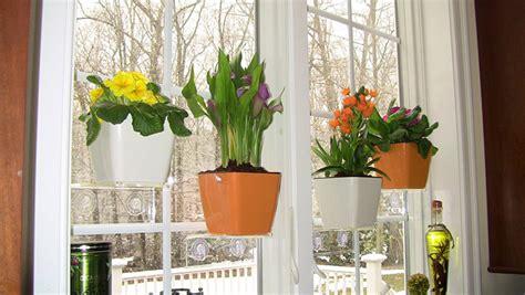 Pot Gantung Dengan Tatakan segarkan jendela dengan tanaman gantung kreasi sendiri