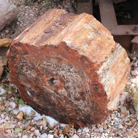 arizona woodworking arizona petrified wood quartz and other decorative rock