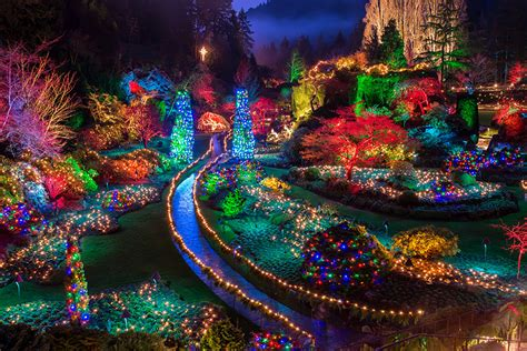 picture canada christmas butchart gardens nature new year